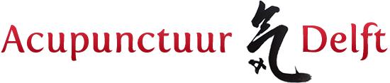 Acupunctuur Delft